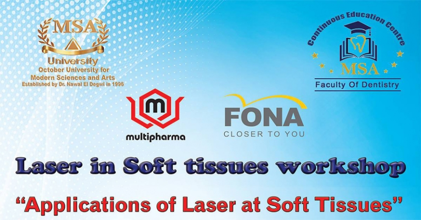 Laser in Soft Tissues Workshop